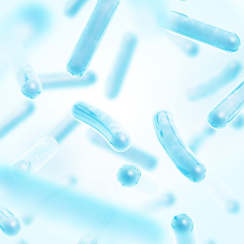 probiotika_lactobacillus.jpg